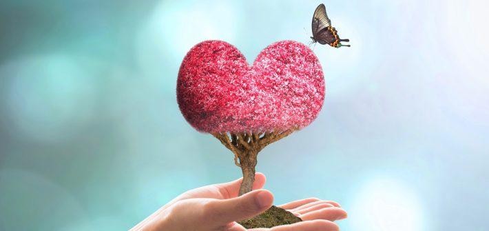 pomul iubire, fluture